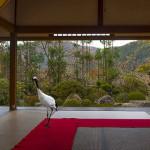 Karen Knorr : Karyukai et Monogatari à la galerie Les Filles du Calvaire