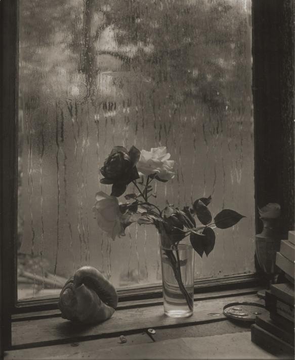 La dernière rose (c) Josef Saudek