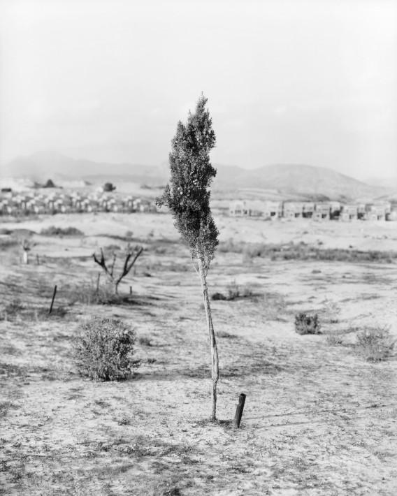 Jürgen Nefzger Fortuna, Espagne, 2015 Image extraite de la série La loi du sol © Jürgen Nefzger Courtesy de l'artiste et de la galerie Françoise Paviot